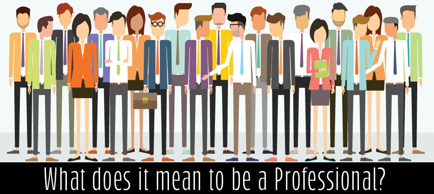 What does it mean to be a Professional?